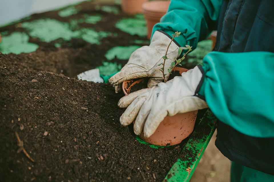 servicios_medioambientales